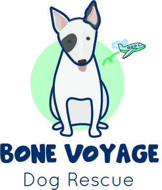 Bone Voyage Dog Rescue